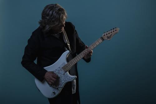 patrice vigier, guitars